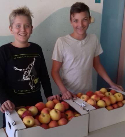 Zahvala za donacijo jabolk