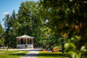 Vabljeni na poletno rekreativni sprostitveni pohod skozi mestni park