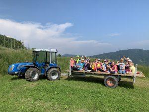 Prvošolčki na turistični kmetiji Davčen