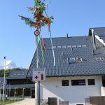 Učenci Ožbej Grilc, Peter Jakelj in Gašper Lepoša so ob praznovanju 50 letnice šole postavili mlaj pred vhod v šolo